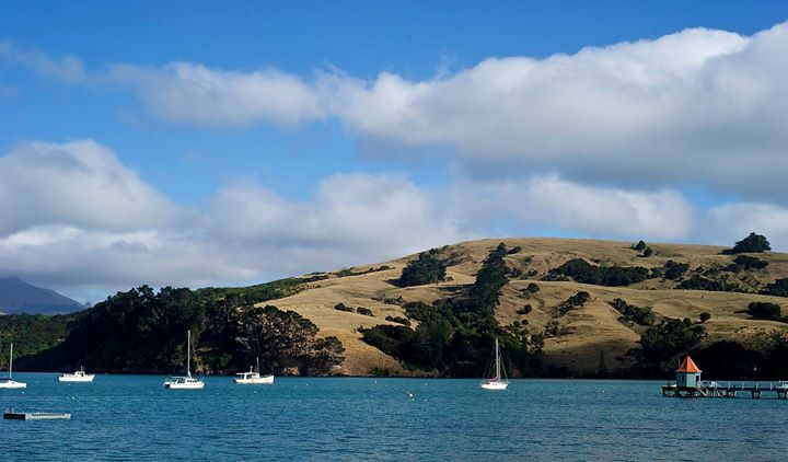 The Harbour, Akaroa, South Island