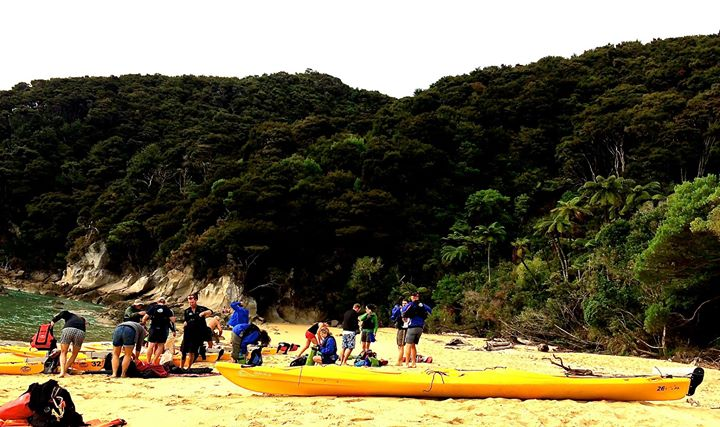 Abel Tasman National Park is fringed with superb beaches