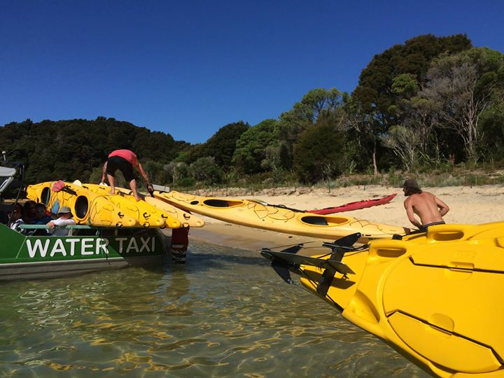 Kayaking at The Abel Tasman National Park
