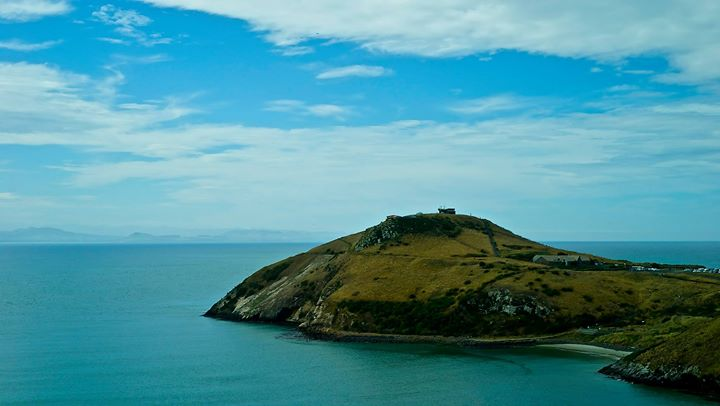 Otago Peninsula, Dunedin, South Island