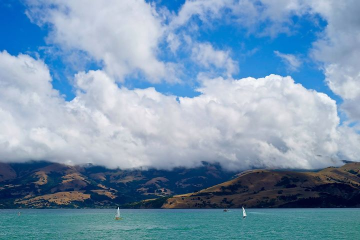 The Harbour, Akaroa, South Island, New Zealand