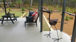 outdoor bird