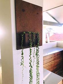 plant holder.jpg