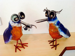 Kimberley Kingfishers