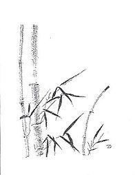 bambou.jpeg