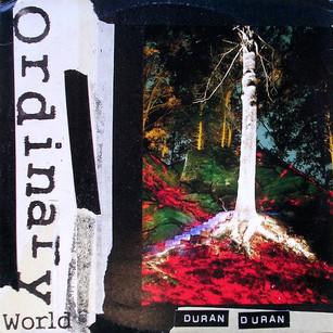 Ordinary World: 25 Years Later