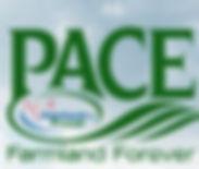 pace_edited.jpg