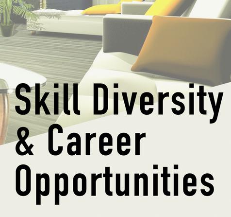 Skill Diversity.png