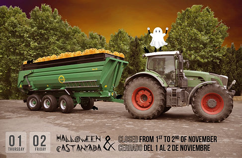 2018-10-30 halloween