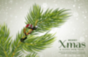 2018-12-03 nadal