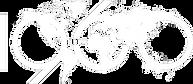 Logo Juscafresa white.png