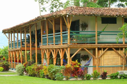 Colombia-Bambusa-Walking-PalmTrees-Coffe