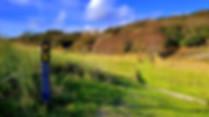 Ireland-Trips-Walking-Kerry-Way.jpg