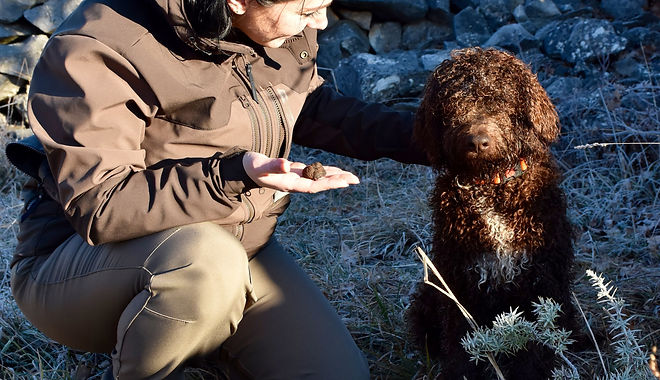Truffle hunt from Split (1).jpg
