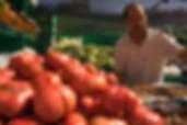 spain-navarre-estella-market-vegetables-basque country and rioja