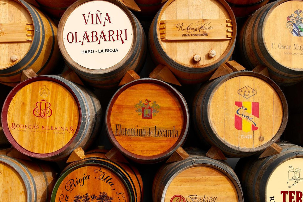 Spain Basque Country Rioja Region Wine Barrels Tasting