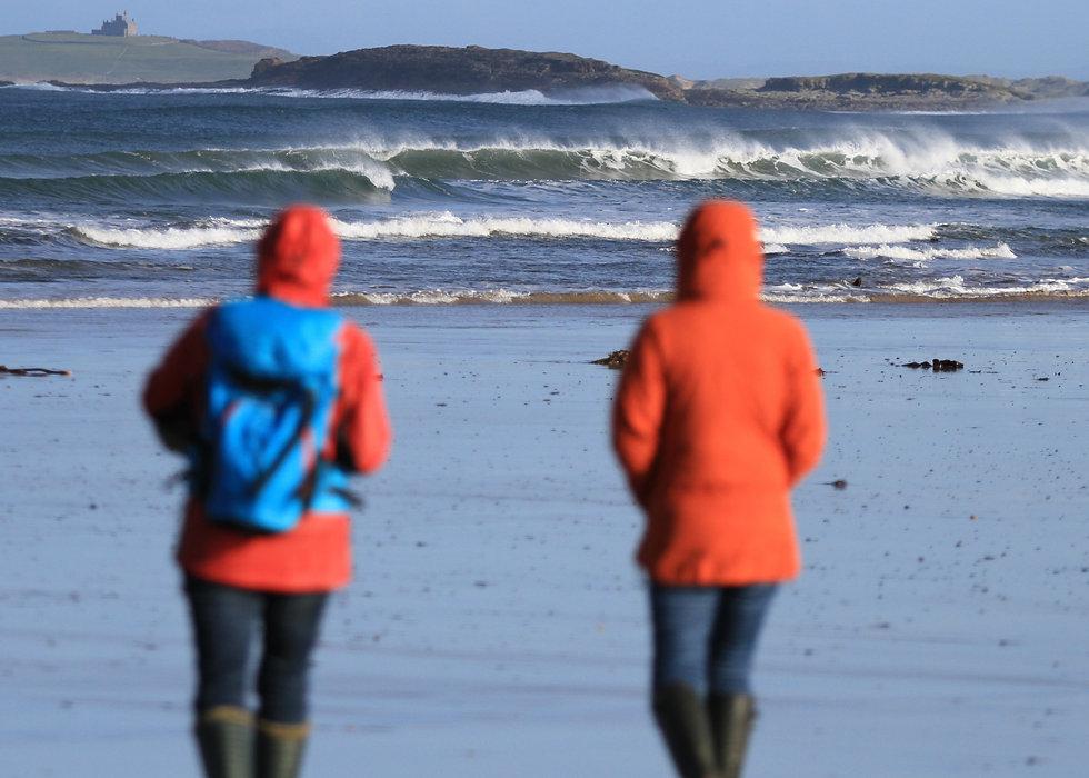 seaweed beach Northern Ireland walking hiking tour