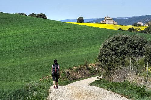 Basque & Rioja - 10-day Self-Guided Tour - Deposit