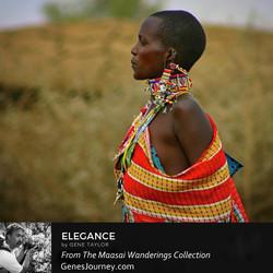 elegance - maasai wanderings.jpg