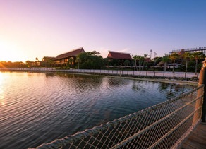 Disney's Polynesian Resort Opening Delayed to Summer 2021!