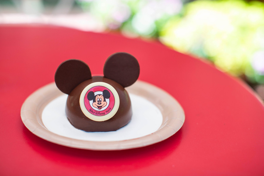 Mickey Dome Cake