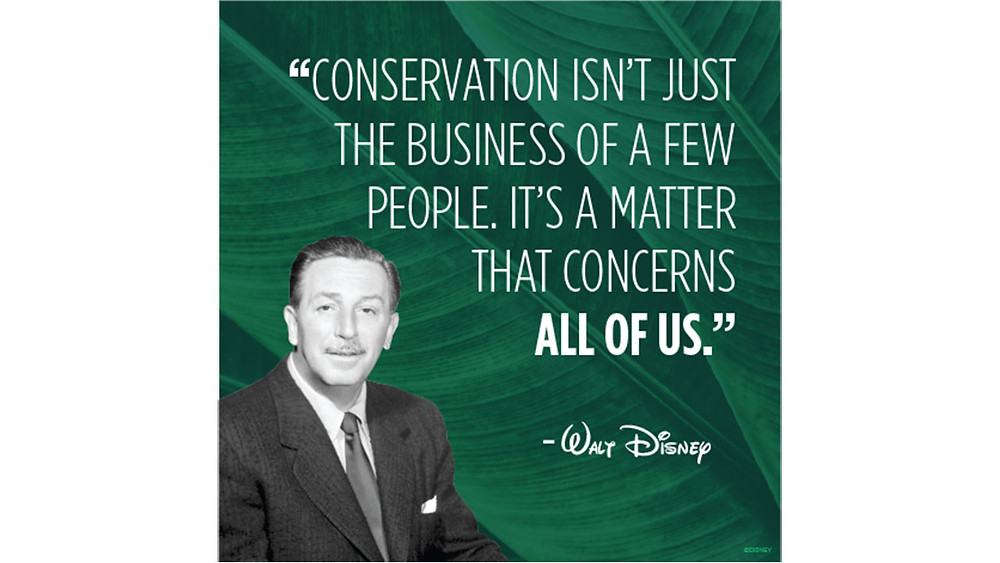 The Walt Disney Company Commits to Reducing Plastic Waste