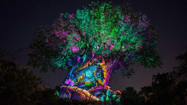 Ring in the New Year at Disney's Animal Kingdom Theme Park