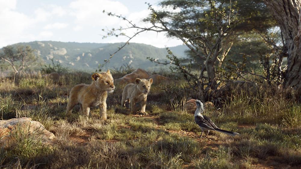 This Saturday Stars of 'The Lion King' Will be Honorary Grand Marshals at Magic Kingdom Parade