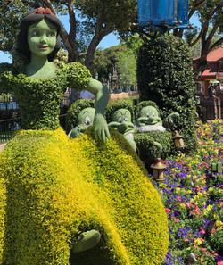 Flower & Garden Festival