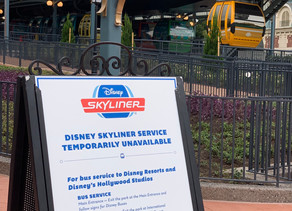 UPDATE: Disney Skyliner Remains Closed Indefinitely After Accident