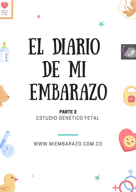El Diario de Mi Embarazo #3
