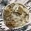 Thumbnail: Quid Pro (Cookie) Dough
