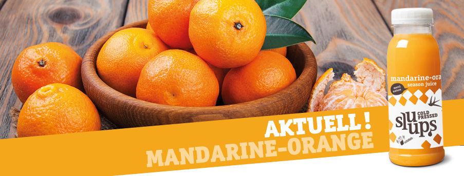 webbanner_season_mandarine_orange_de_903x343px.jpg