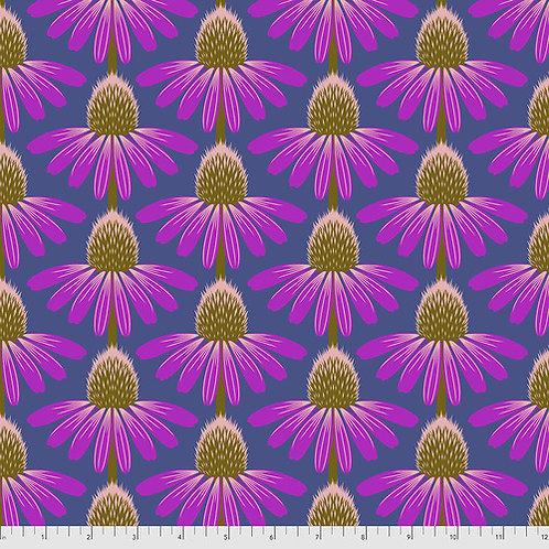 Love Always Echinacea -Haute