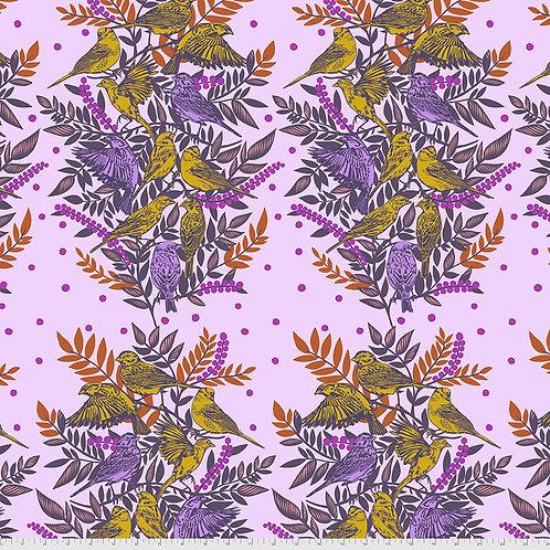 Bright Eyes - Anna Maria Horner - Visitation Lilac