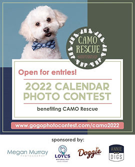 calendar contest FIRST ONE 2021.jfif