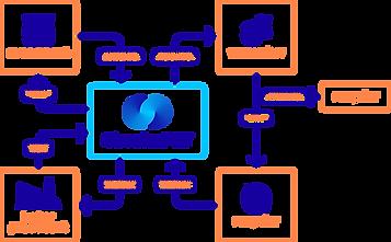 CircularPet_Infographic_transparant_4x.p