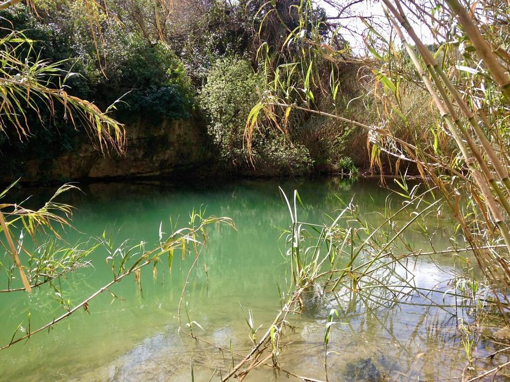 Cava Prainito, una piscina naturale di acqua dolce da scoprire ELORODISTRICT SICILY STAFF