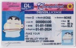 Connecticut-fake-id-template