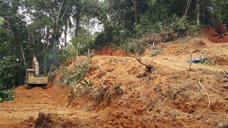 durian farm, land clearing, land terracing, excavator