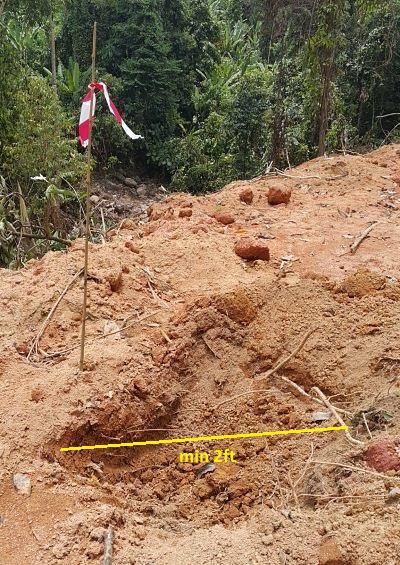 durian planting hole, excavator digging, planting hole marking