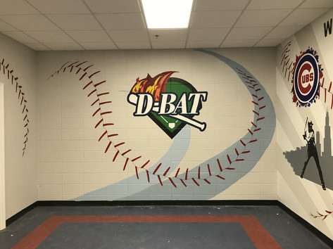 D-Bat Baseball Training Facility Party Room
