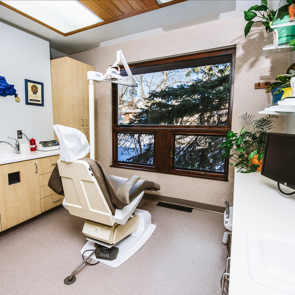 Lake Superior Dental