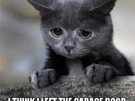 Did you leave the garage door open?