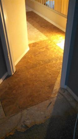 Ahh, new floor