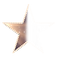 West_End_Stage_Stars_Blank_Star.png