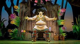 Shrek-The-Musical-Leeds-Grand-Theatre-Cr