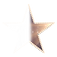 West_End_Stage_Stars_Blank_Star_edited.p