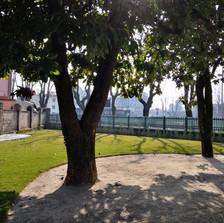 Villa S.