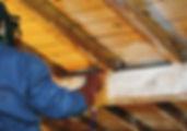 Traitement insectes xylophages, larves, traitement fongicide des charpentes, traitement contre attaques xylophages, traitement des bois de charpente par votre artisan charpentier de Metz Meurthe et Moselle